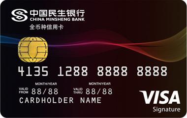 民生VISA全币种信用卡